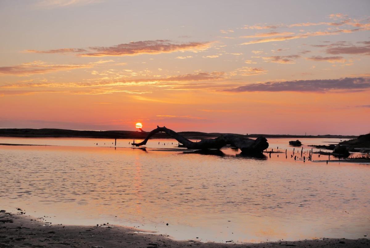 Coucher de soleil en Camargue